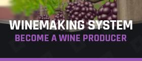 [-50%] 🍇 Winemaking System