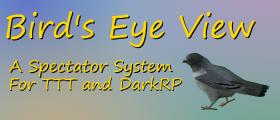 Bird's Eye View - Spectator System